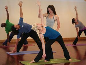 eldorado mountain yoga ashram  200 hour curriculum